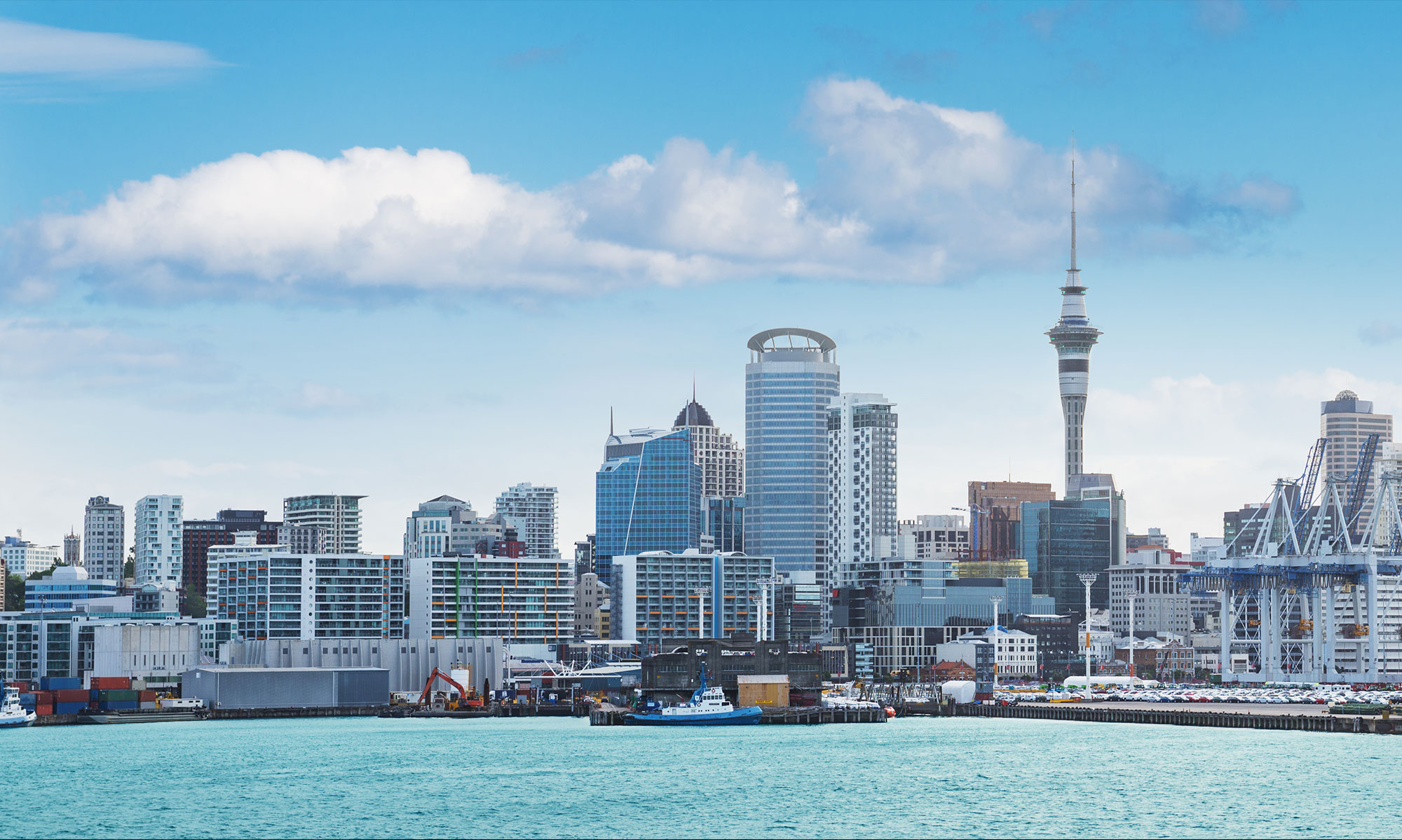 Auckland Workspace Services | Crown FIL